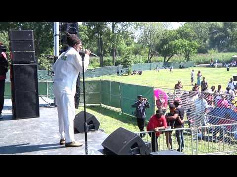 Reggae Fest Roy Wilkins Park