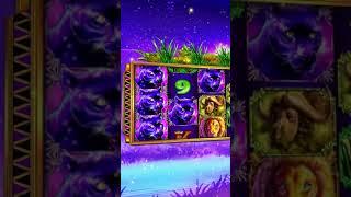 Neverland Casino - Grand Lion from WGAMES (9x16) v2