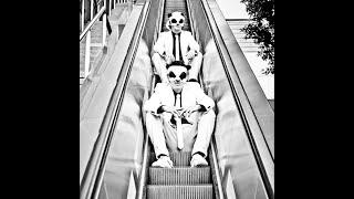The White Panda - Mo Free Mo Fallin