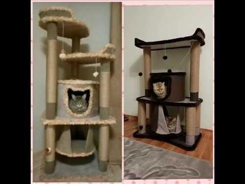 Домики,когтеточки и игровые комплексы для кошек EasyCat73