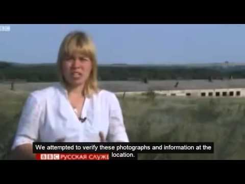 Ukrainian eyewitnesses confirm military jet alongside MH17 airliner: BBC deletes video 25 July 2014