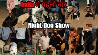 NIGHT DOG SHOW FIRST TIME IN INDIA | ROHTAK KENNEL CLUB