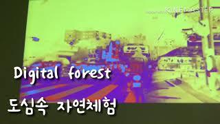 수원시립아이파크미술관 Digital Forest 전시2018