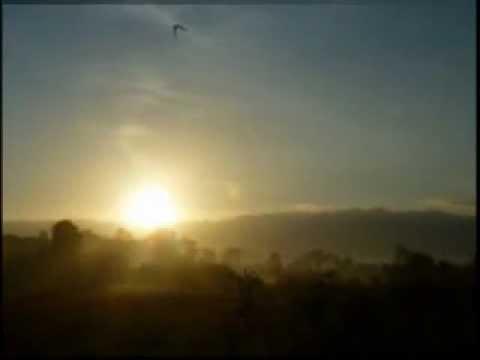 Vid Bongawan  Flybaits   Keindahan Alam