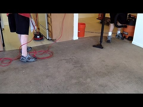 Oreck Orbiter 550MC, Ridgid WD1450 Wet/Dry Vac, Grandi Groom Carpet Rake Cleaning Carpets and Floors
