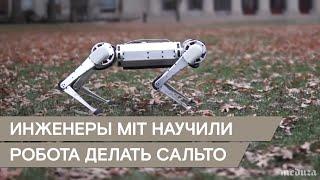 Четвероногий робот делает сальто. У него отлично получается