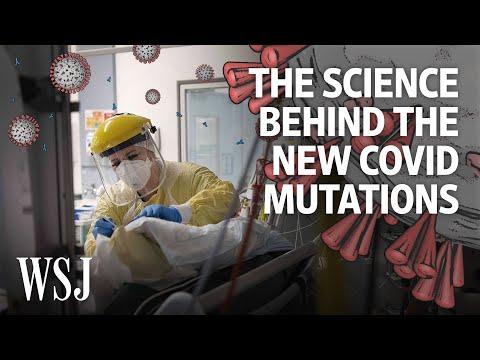 The Coronavirus Is Mutating. Here's What We Know | WSJ