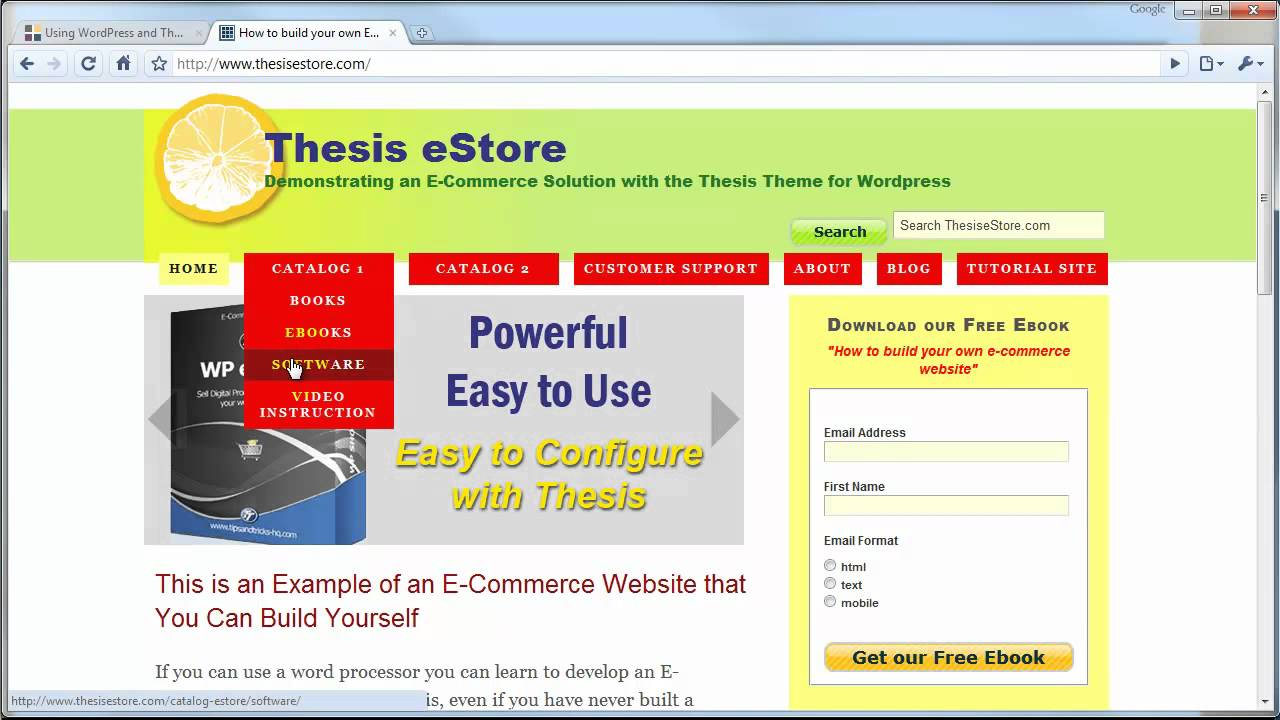 How to make an e commerce website using wordpress thesis An website