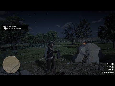 Red Dead Redemption 2 - Perfect Skunk Carcass