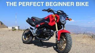 VLOG #010 - 10 reasons the Honda Grom is the perfect beginner bike