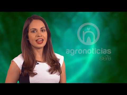 AGRONOTICIAS sie7e PROGRAMA 75