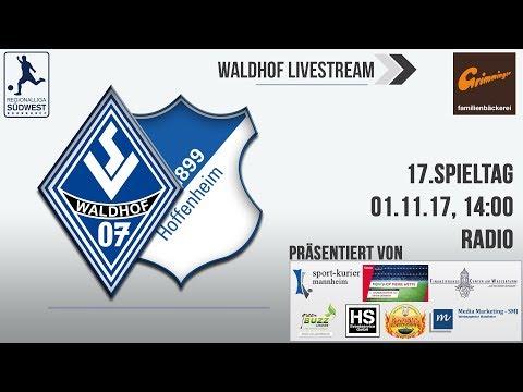 17.Spieltag: SV Waldhof - TSG Hoffenheim II (Radio)