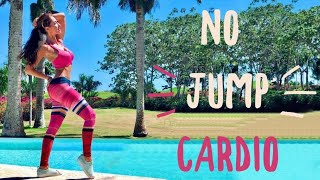 No Jump Cardio To Lose Weight | Burn Fat with Low Impact Exercises