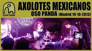 AXOLOTES MEXICANOS - Oso Panda [Live 19-10-2013 | Sala Siroco, Madrid] 11/12