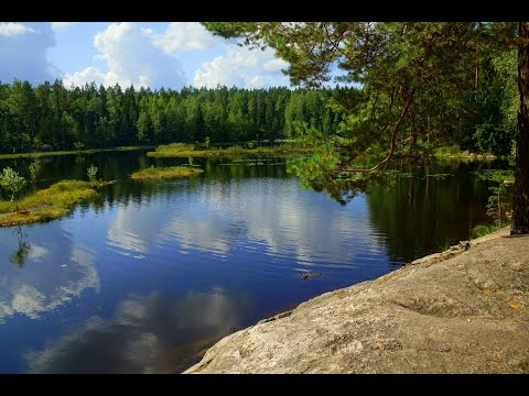 Hiking in Nuuksio National Park and Kayaking in Kasnäs | Finland Vlog Day 3