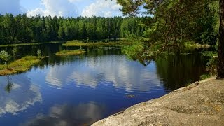 Hiking in Nuuksio National Park and Kayaking in Kasnäs   Finland Vlog Day 3