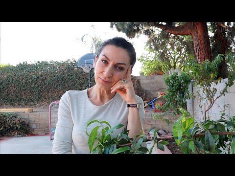 Ссоримся ли Мы с Мужем - Отвечаю на Вопросы - Эгине - Семейный Влог - Heghineh Vlogs In Russian