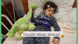 Toddler Sleep Study