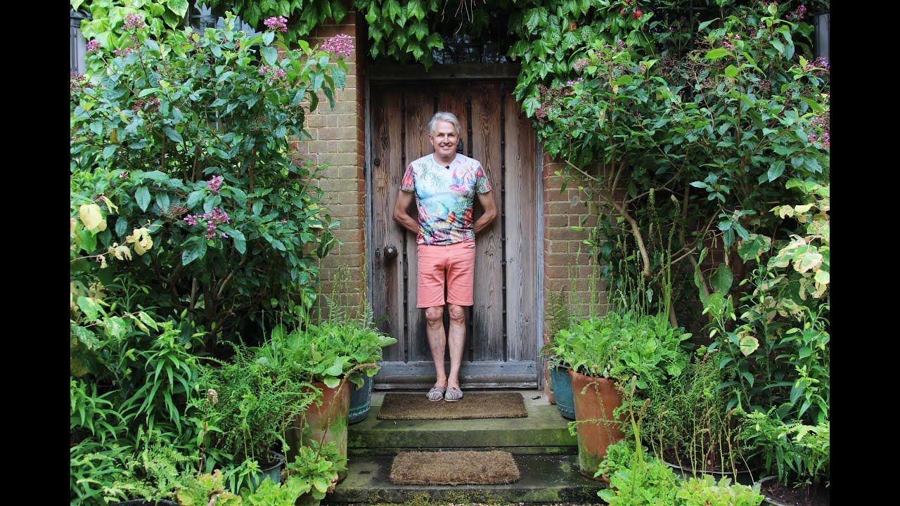 Plants For A North Facing Garden -
