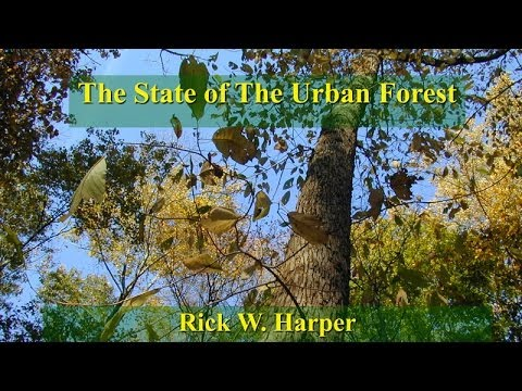 State of the Urban Forest