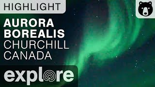 Amazing Display of Aurora Borealis - Cape Churchill Canada - Live Cam Highlights thumbnail