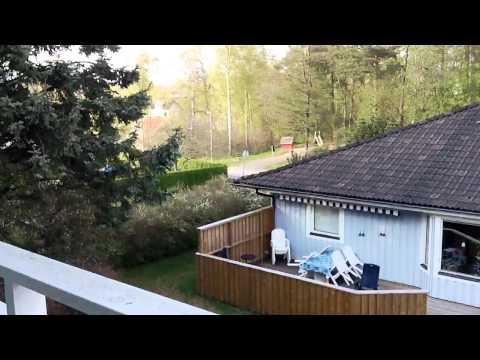 MEDION® LIFE® Camcorder P47350 (MD 86288) - Video Sample