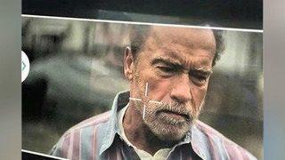 Шварценеггер снимается в фильме об авиакатастрофе над Боденским озером