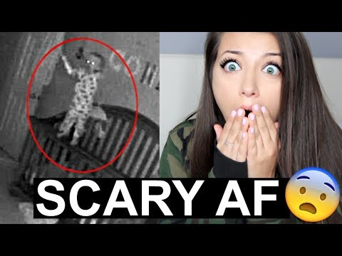 Download Youtube: PARANORMAL BABY MONITOR ACTIVITY *VERY SCARY* REACTION*