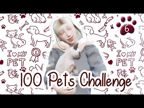 The Sims 4 Indonesia : 100 Pets Challenge - Kucing Himalaya~ 🐾6
