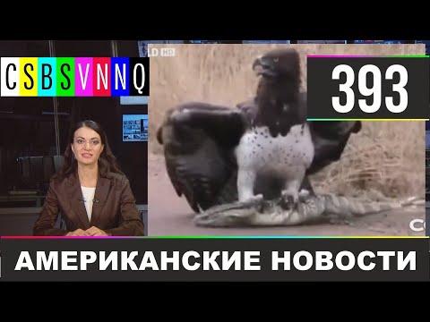 CSBSVNNQ - Американские новости #393 Выпуск от 20.11.2020