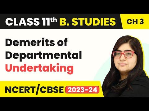 Departmental Undertaking - Demerits | Class 11 Business Studies