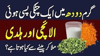 Health Benefits of Cardamom || Elaichi K Fayde Urdu Hindi || Urdu Lab