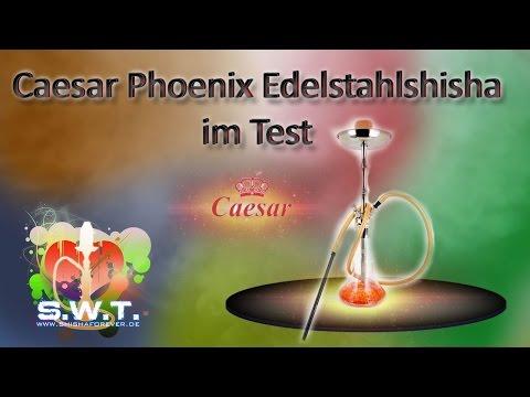 Caesar Phoenix Shisha im Test