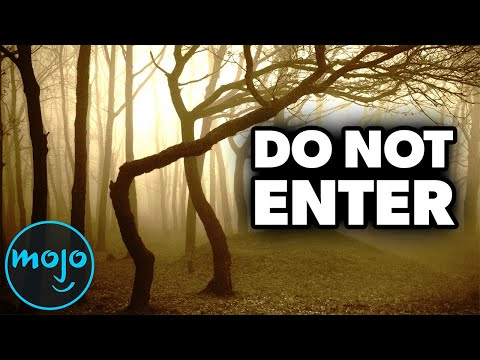 Top 10 Most Haunted Forests In the World