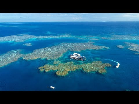 Sunlover Reef Cruises | Outer Great Barrier Reef Tours