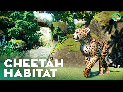 cheetah-habitat---planet-zoo-lets-play-franchise-mode---casa-de-la-tierra