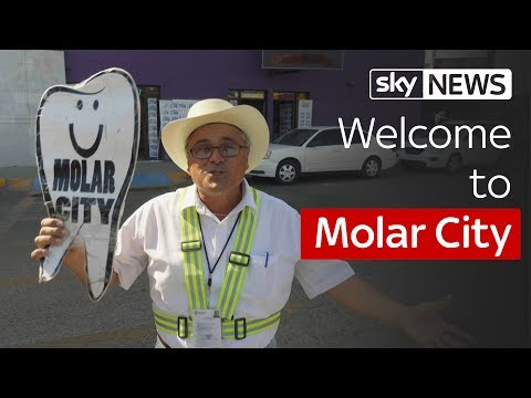 Welcome to Molar City