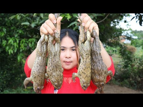 Awesome Cooking Frog Soup Delicious Recipe - Cook Frog Recipes - Village Food Factory