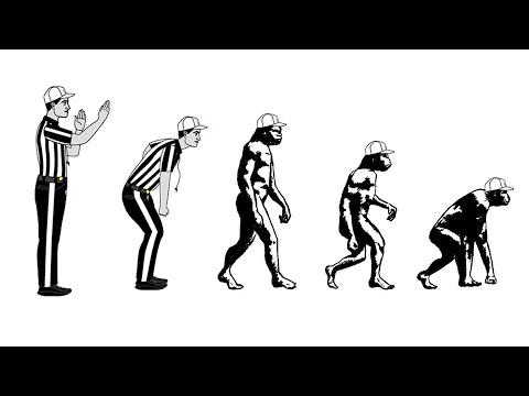 The De-Evolution of NFL Referees