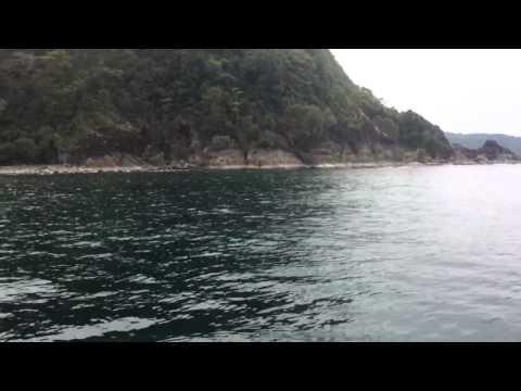 Hamilo Coast Fish Sanctuary