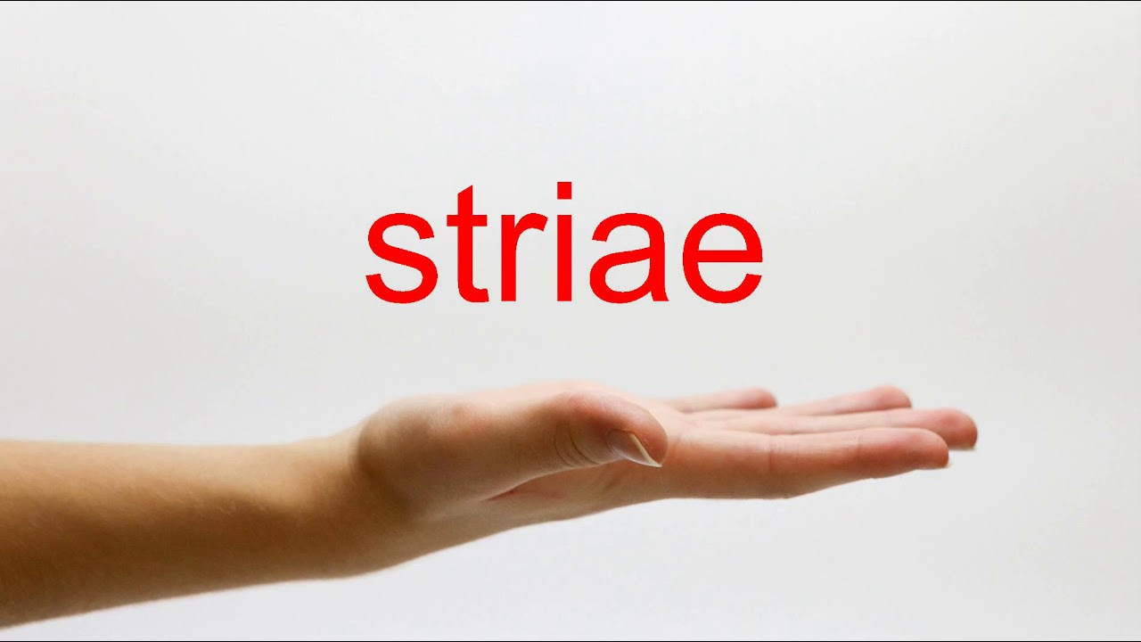 Download How to Pronounce striae - American English