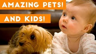 Most Amazing 1 Hour of Cute Kids And Pets 2018   Funny Pet Videos!