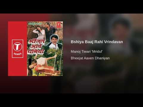 Bansiya Baaj Rahi Vrindavan | Manoj Tiwari