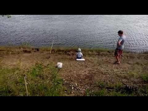 Г харабали р Ашулук 22 мая 2019 г ловим сазана вода уже ушла
