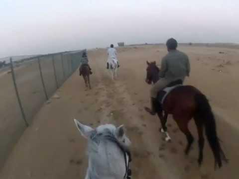 Horse Riding at Dubai Polo & Equestrian Club ( last canter back home ), Ian Dmello
