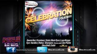 Celebration Riddim Mix {Deemus Productions} [Dancehall] @Maticalise