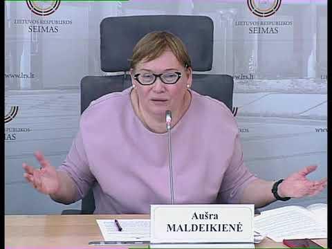 """2019-06-13 Seimo narės Aušros Maldeikienės spaudos konferencija  """"Konstitucija pagal 15min.lt"""""""