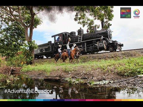 Be an EXPERT in Tren Crucero Ecuador (Français)