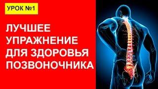 Урок 1. Почему Болит спина? Упражнения для мышц спины и здоровья позвоночника.