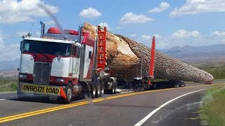 Amazing Dangerous Fastest Logging Wood Trucks Operator Skill. Oversize Load Heavy Equipment Working